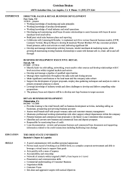business development executive resume business development executive resume sle free sles