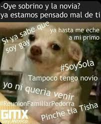 Funny Memes In Spanish - pin by paticcia sánchez on pan sensual p pinterest