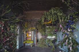 flower house abandoned house in detroit brought back to with 4 000 flowers