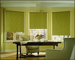 Roll Up Blinds For Windows Bedroom The Most Roller Shades Blinds Window Coverings Palm About