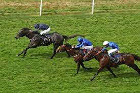 royal ascot 6 for 6 caravaggio carries banner for daddy