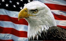 Eagle American Flag Bald Eagle With American Flag Bald Eagle And Usa Flag Fireworks