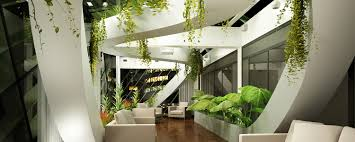 Home Interior Plants by Interior Plant Maintenance Service For The Home And Office