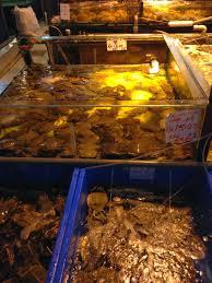 r馮lette cuisine lanlan travel 第三日