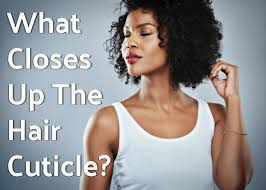 how to take care of the hair cuticle hair damage your hair cuticle may be the problem and what you can do