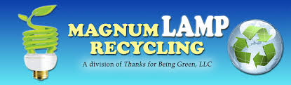 magnum lamp recycling light bulb and lamp recycling services in