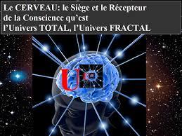 univers du siege le cerveau et l univers total