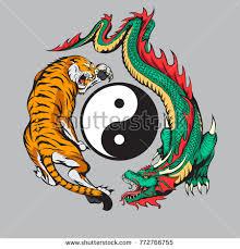 fighting tiger around yin yang stock vector 772766755