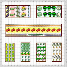Companion Garden Layout Raised Bed Companion Vegetable Garden Layout Archives Gardening