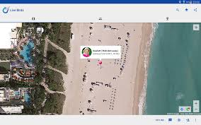 Google Maps Miami Beach by Live Birds Map Me U0026 Friends Android Apps On Google Play