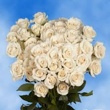 Wholesale Roses Cheap Roses Wholesale Bulk Find Roses Wholesale Bulk Deals On