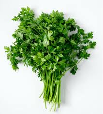 herb convert fresh herbs to dried use dried herbs in a recipe instead