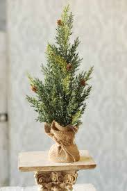 christmas trees wholesale lancaster home and holiday lancaster