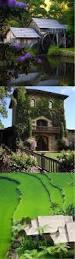 best 25 bungalow landscaping ideas on pinterest craftsman live