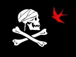 25 pirate flags ideas preschool pirate theme