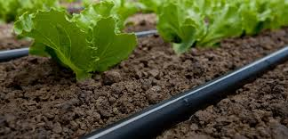 rivulis drip irrigation micro irrigation drip tape drip lines
