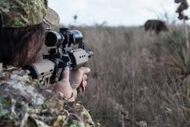 choosing the right caliber for deer