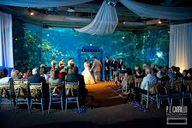 wedding venues in ta fl resume design inspiration best place to find your designing
