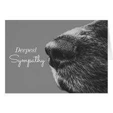 dog condolences dog pet sympathy dog condolence card zazzle