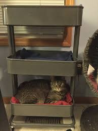 råskog utility cart as the world purrs things i love ikea cat bed hack