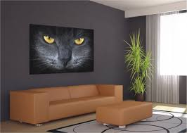 xxl poster wall mural wallpaper black cat cat s eye photo 160 cm x xxl poster wall mural wallpaper black cat cat s eye photo 160 cm x 115 cm 1 75 yd x 1 26 yd