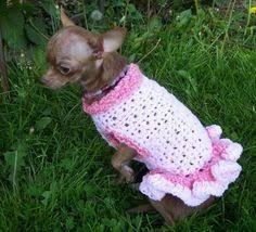 crochet pattern for dog coat size small dog free crochet pattern blogger crochet patterns we