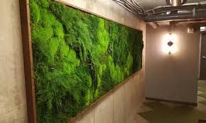 Interior Plant Wall The Perfect Green Wall Art For Your Home Or Business Artisan Moss