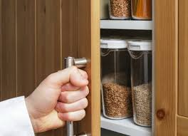 How To Get Rid Of Bugs In Kitchen Cabinets Getting Rid Of Bugs In The Kitchen Thriftyfun