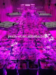 california led grow lights 2017 listed cob led grow lights 600 watt cob led grow light buy