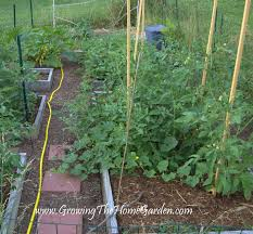 Making A Vegetable Garden Box by How To Make A Vegetable Garden Bed Large And Beautiful Photos
