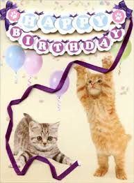 kittens die cut 3d birthday card by paper house productions