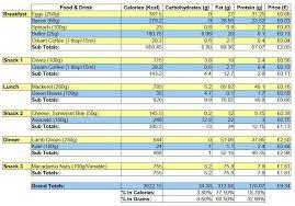 Diet Tracker Spreadsheet 9 Weight Loss Challenge Spreadsheet Templates Excel Templates