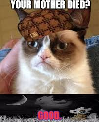 Good Grumpy Cat Meme - grumpy cat hates cubone imgflip