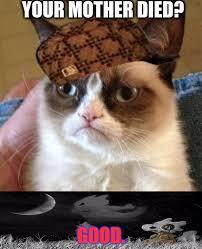 Grumpy Cat Meme Good - grumpy cat hates cubone imgflip