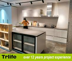 Kitchen Cabinets With Frosted Glass Ready Made Kitchen Cabinets 1 Inspiring Ideas Contemporary Kitchen