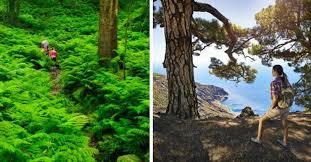 imagenes impresionantes de paisajes naturales los espacios naturales de canarias más impresionante y bonitos para