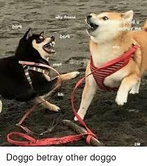 Berk Meme - bonk why friend berk snarl cw doggo betray other doggo dank meme