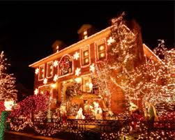 bus tour new york city dyker heights christmas lights 3 5 hours