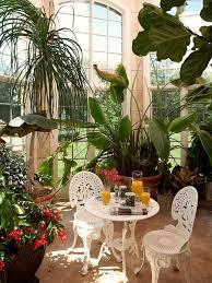 sunroom plants houzz