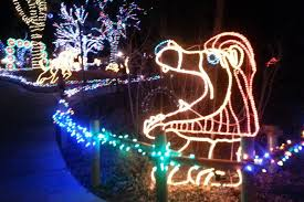 zoo lights at hogle zoo fancy hogle zoo lights f43 on stunning selection with hogle zoo
