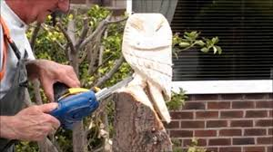 How To Build A Stump by My Dad Making A Chainsaw Carving Of An Owl From A Tree Stump