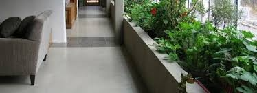giardini interni casa creare un giardino d inverno edilnet
