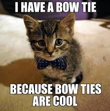 Tie Meme - bow tie cat weknowmemes generator
