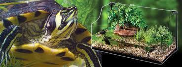 exoterra turtle terrarium u2013 large u2013 reptile city