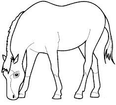 14 horse color pages cesar chavez coloring page free printable