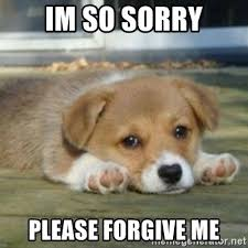 Forgive Me Meme - 20 forgive me memes that ll show how sorry you are sayingimages com