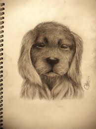 10 golden retriever puppy by chedrian on deviantart
