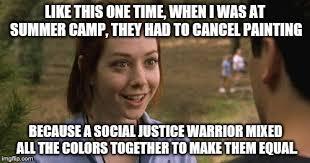 Social Justice Warrior Meme - sjw s in a nutshell imgflip