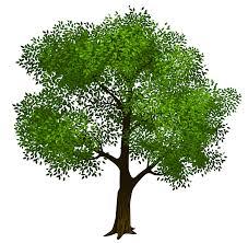 tree clip vector clipartandscrap