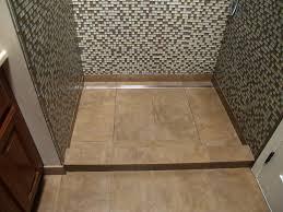 Bathroom Shower Drains Linear Channel Drain Shower Contemporary Bathroom Detroit